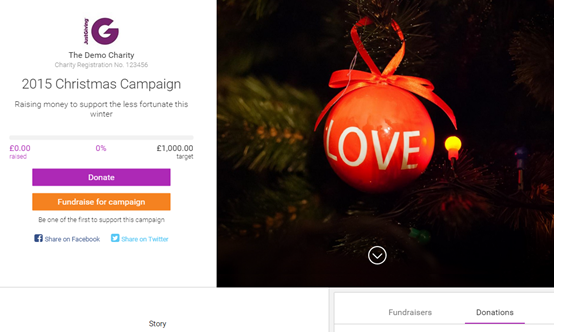 Christmas Campaign Page Example