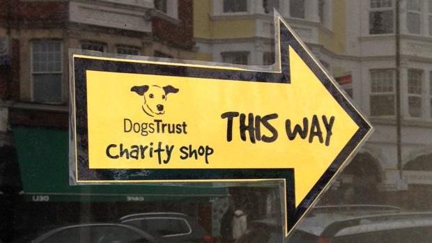 Dogs Trust Shop 2