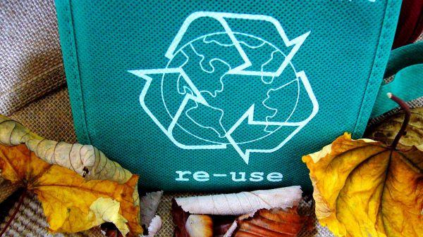 Environmentally Friendly Bag
