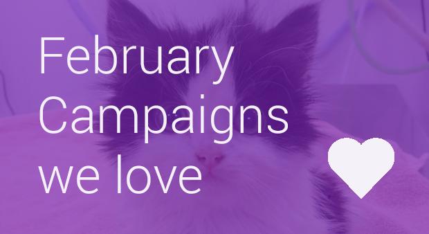 Feb Blog