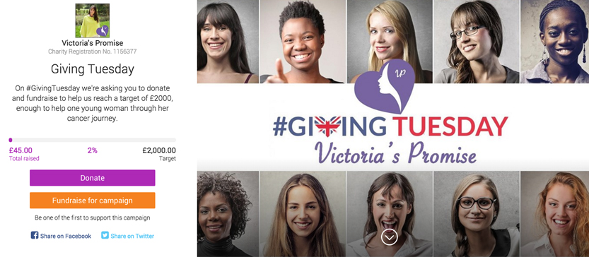 Screen shot of the Victoria's Promise Giving Tuesday campaign page