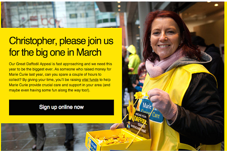 Great Daffodil Appeal collection