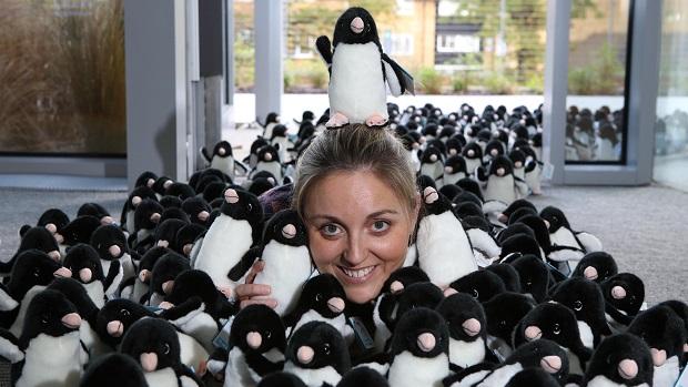 WWF Penguins 04 © Gretel EnsigniaPA Wire Web