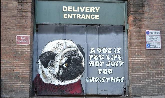 Dogs Trust Graffiti