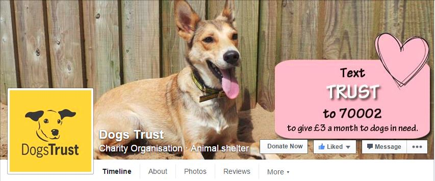 dogs trust FB